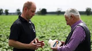 Zorvec Enicade® - to nowy fungicyd. Co sądzi o jego skuteczności plantator ziemniaków?