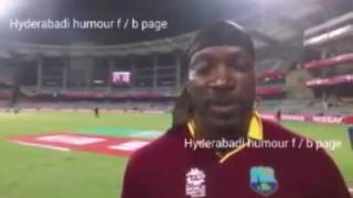 Chris Gayle Marathi video