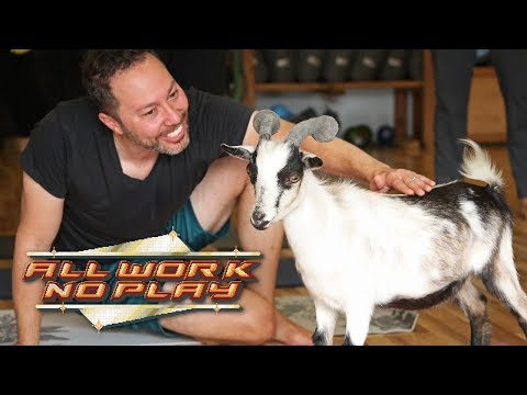 All Work No Play: Goat Yoga