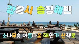 강원 강릉시 송정해변  Songjeong Beach i…