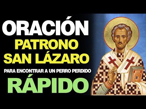 🙏 Oración al Patrono San Lázaro PARA ENCONTRAR A UN PERRO PERDIDO RÁPIDO 🐶