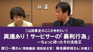 異議あり!金融サービサー法改正【山田厚史のここが聞きたい】 180703収録