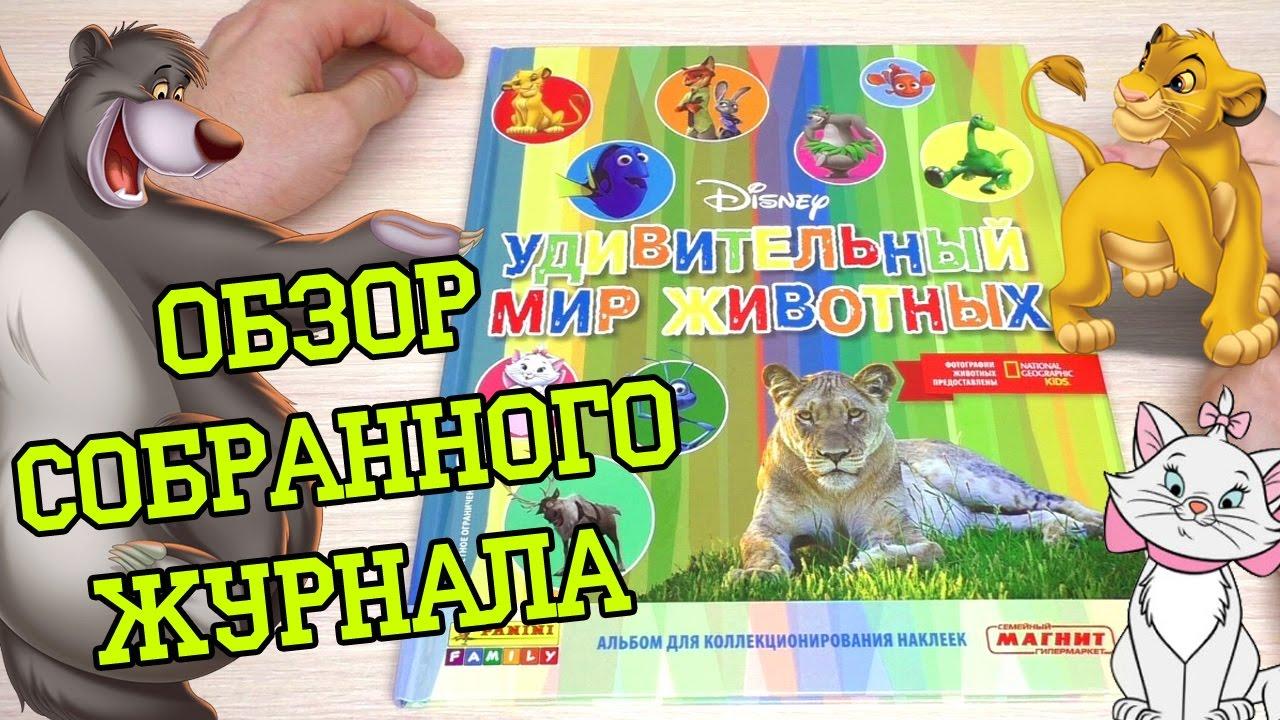 PANINI Удивительный мир животных Disney - 2016г. Обзор собранной коллекции наклеек