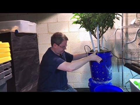 Easy way to change hydroponic nutrients