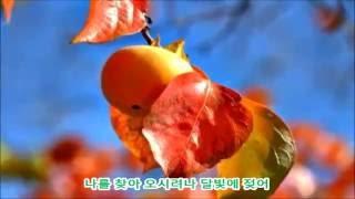 감나무골  가수 채빈