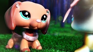 LPS: Summertime Beauty (Film)