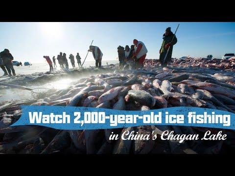 live:-watch-2,000-year-old-ice-fishing-in-china's-chagan-lake丰收的喜悦-体验原始又有趣的查干湖冬捕