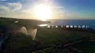 畑地かんがい(奄美群島・沖永良部島)
