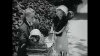 VINTAGE GAINES MULTI MENU - BEEF, CHICKEN & LIVER (CUTE PUPPY IN A BABY STROLLER WEARING A BONNET)