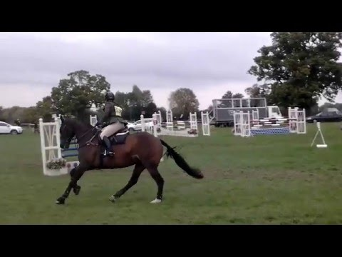 Cockney Rebel II Broadway Novice 2015