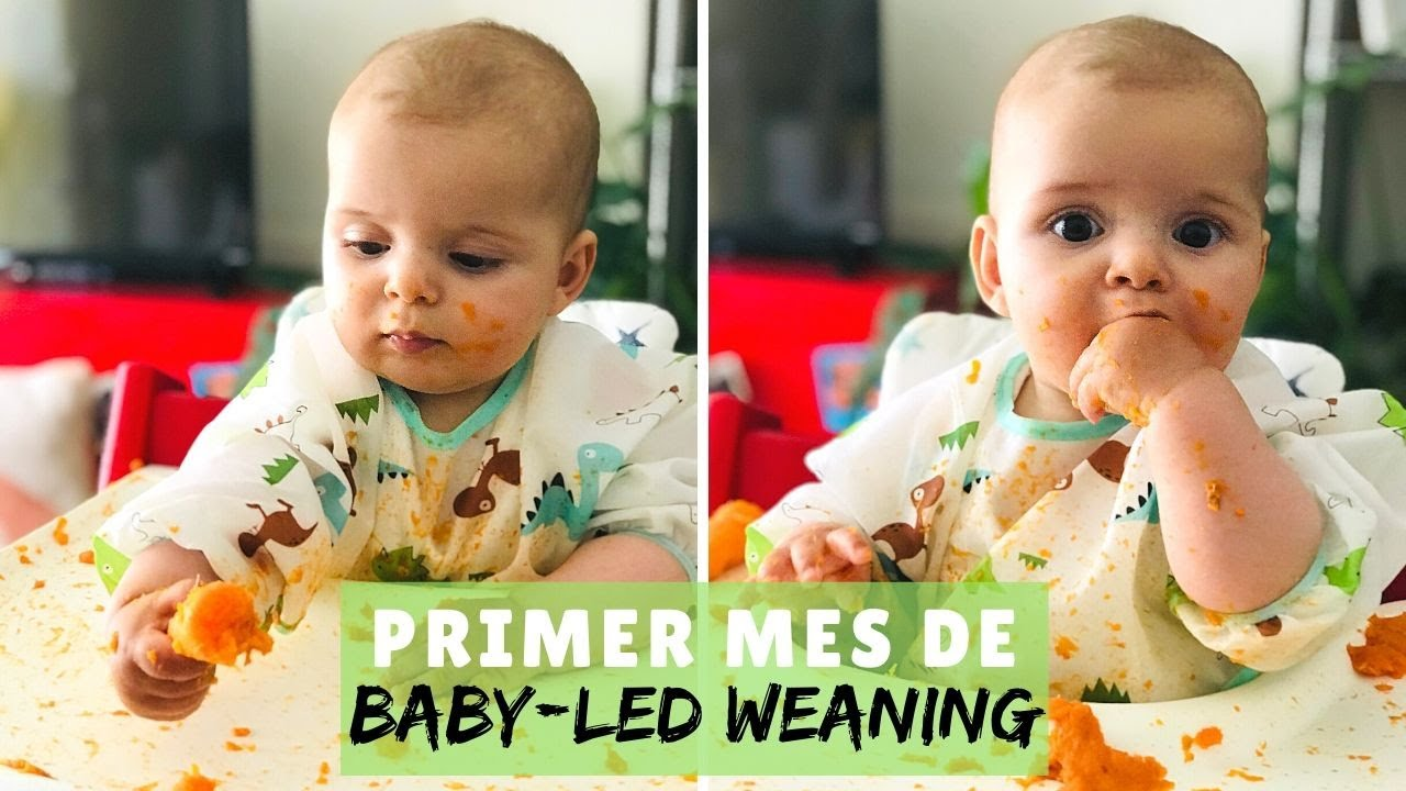 PRIMER MES DE BABY-LED WEANING -- Trucos y consejos  |  Suddenly This