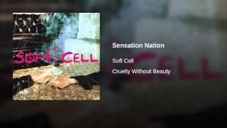 Sensation Nation