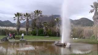 Old Faithful in Napa Valley - Calistoga, California