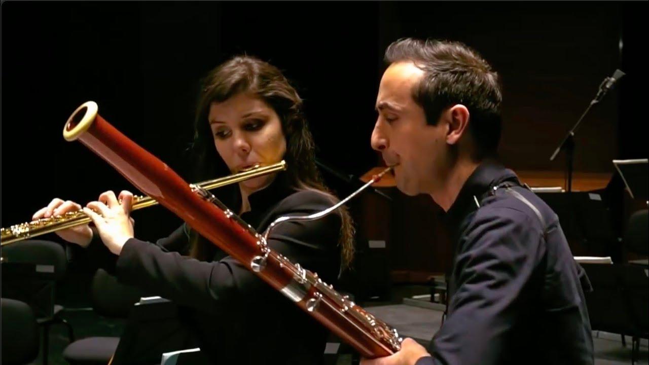Download Villa-Lobos: Bachianas Brasileiras No. 6 - Aria (Chôro)