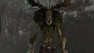 The Witcher 3 Древний леший