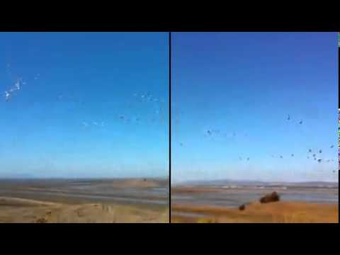 Video Auto Enhance Comparison