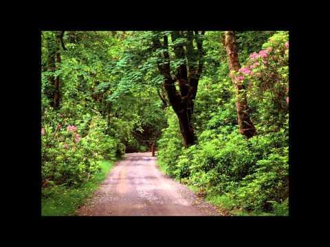 The Chieftains - Raglan Road - High Quality