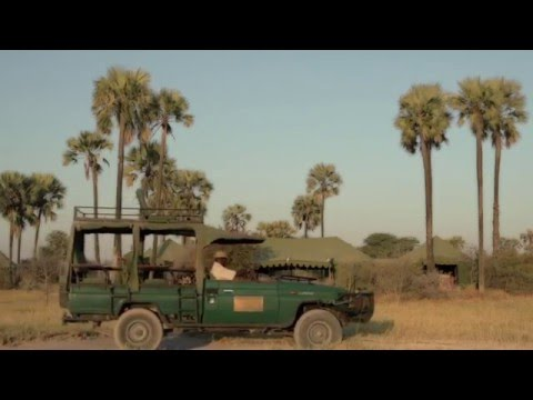 Uncharted Africa Safari co. : JACK'S CAMP - Botswana
