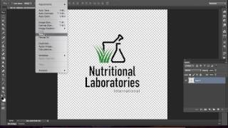 how to quickly convert a color logo transparent png to one color in photoshop