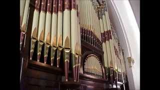 Efrem Marchioretto - MUSIC FOR ORGAN - [Fugue in D Major 2015]