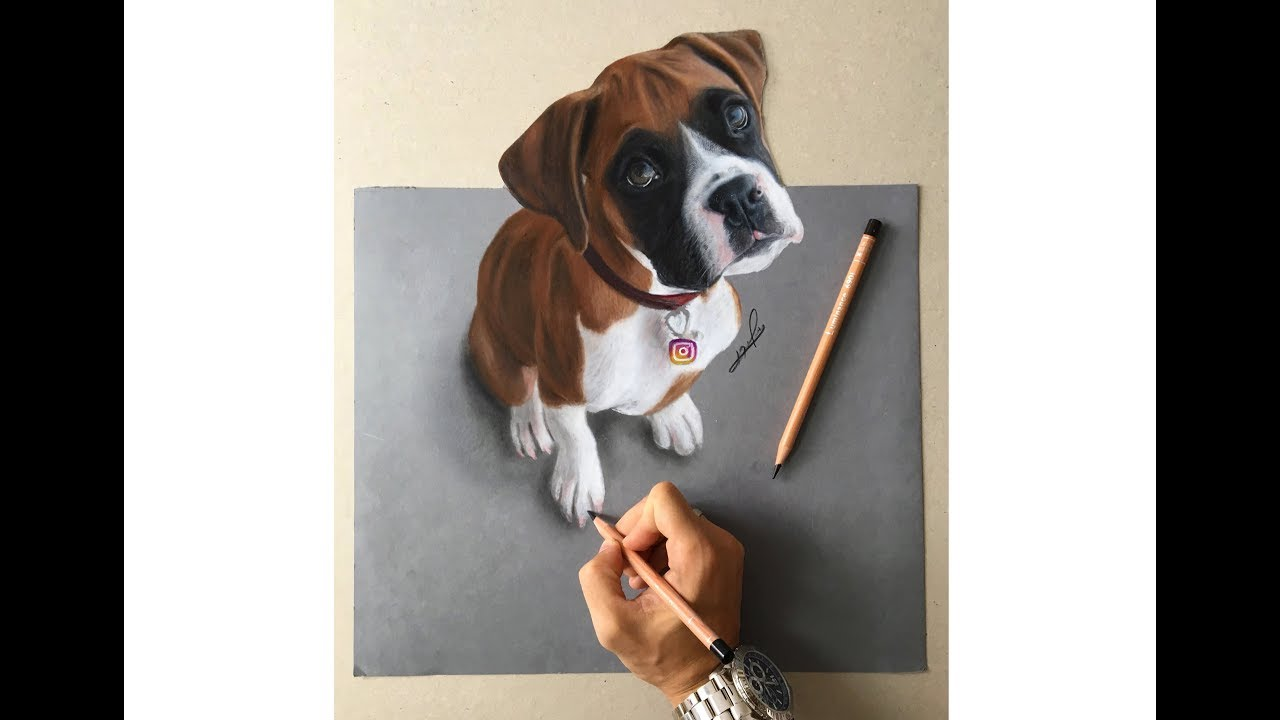 How To Draw A Relistic 3d Boxer Dog With Colored Pencils Liran