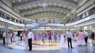 Петербург танцует вальс, «Мой ласковый и нежный зверь»