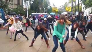 【San Diego K-pop Flash Mob】December Nights 2013【Day Performance】
