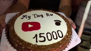 У нас 15000 подписчиков)) Канал My Dog Ru