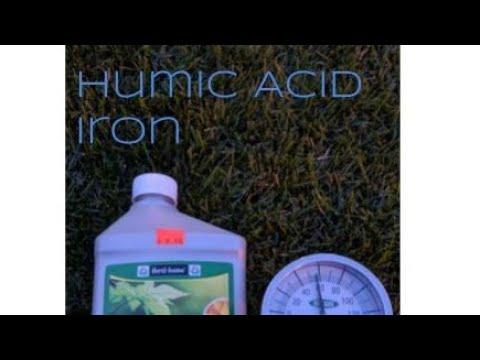 Humic acid, chelated iron, Screamin' Green Fertilizer