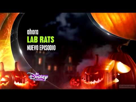 Disney Channel HD Spain Halloween Idents 2014 hd1080