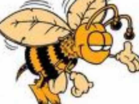 La Tempestad de Durango-Se caso la abeja miope