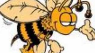 Video La Tempestad de Durango-Se caso la abeja miope download MP3, 3GP, MP4, WEBM, AVI, FLV Agustus 2018