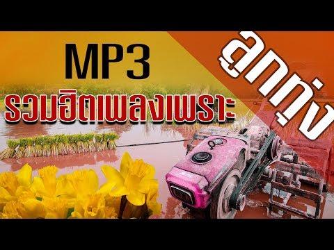ลูกทุ่ง - รวมฮิตเพลงเพราะๆ MP3  #มาแรง ฟังแบบต่อเนื่อง คุณภาพเสียงชัดและดี