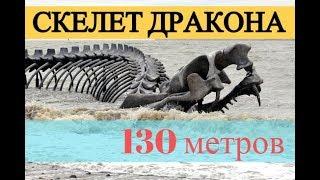 Скелет огромного дракона или змеи у берега Франции (скульптура)