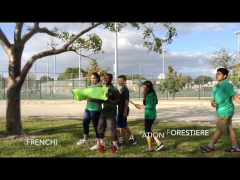 ForestNation Song (Version) by Boca Raton Community Middle School