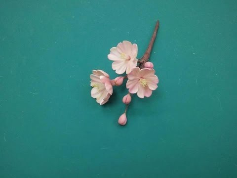 Creating a Cherry Blossom Out of Gumpaste (Part 1/2)
