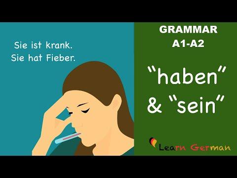 Learn German | German Grammar |  haben und sein als Vollverb | A1