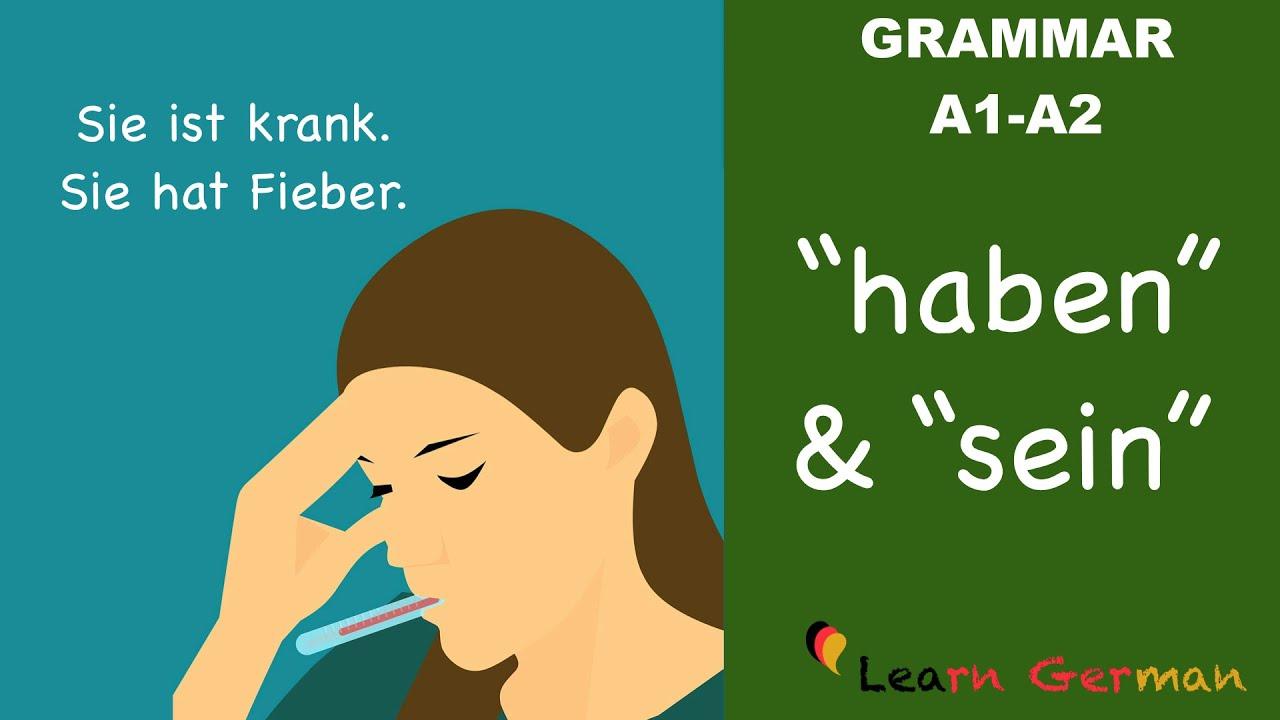 Download Learn German | German Grammar |  haben und sein als Vollverb | A1