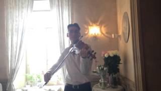 Скрипач на свадьбе. Дмитрий Волков играет романтическую музыку.