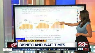How to avoid long Disneyland waits
