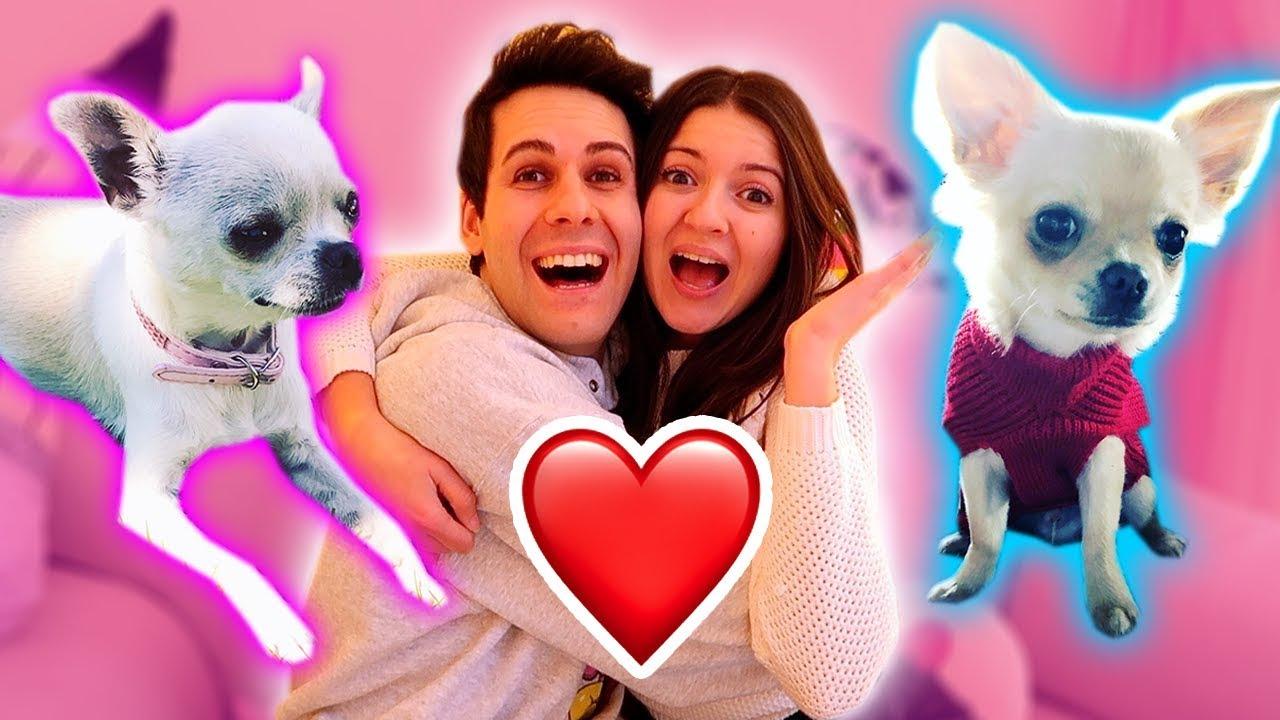 Kira e ray si incontreranno youtube for Immagini di cani da colorare