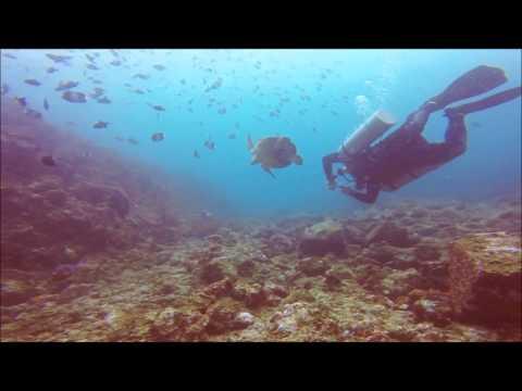 Pegasus Divers @ Pulau Weh 3-7 October 2014