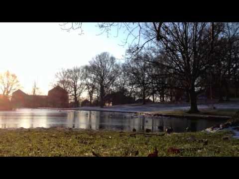 Winter Morning Serenity at Aarhus University