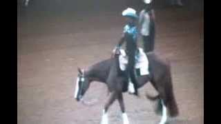"""Taylor Dunn"" ""One Good Time Zipper"" western pleasure, world show, ..."