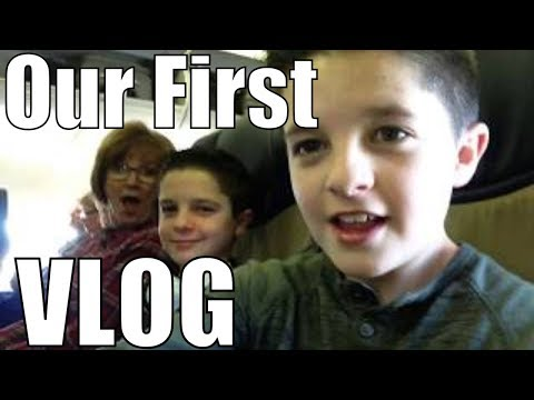 TWINS FIRST VLOG!! * mickey mouse voices* Brock and Boston