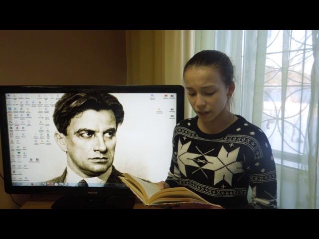 Изображение предпросмотра прочтения – СофьяСуслова читает произведение «Бумажные ужасы» В.В.Маяковского