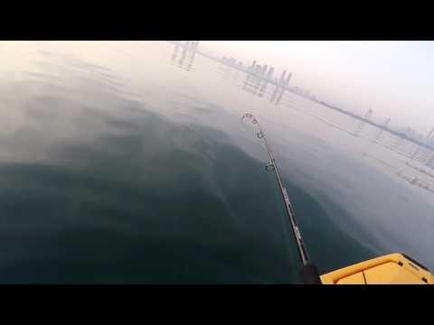 Kayak Fishing Dubai-Hammour (Grouper) on Soft Plastic