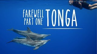 Diving highlights in Tonga (Underwater Ally Adventures) Ep.12
