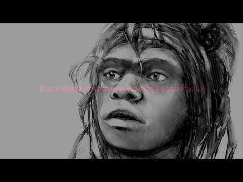 neandertal,-nosso-irmão---uma-breve-história-do-homem