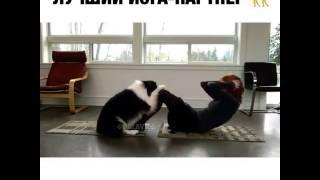 Лучший йога - партнёр